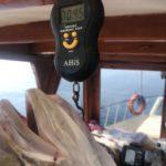 Antalya Jig Avı Turu